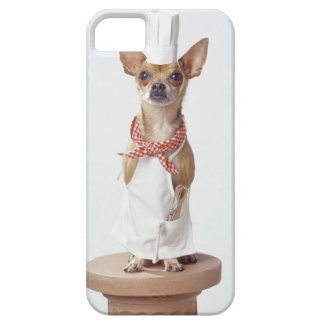 Chihuahua dog wearing chef's whites, studio shot iPhone 5 covers