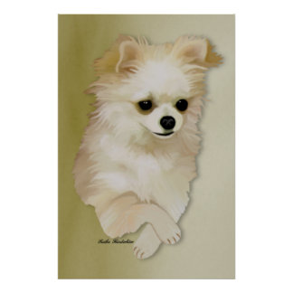 Chihuahua Fawn Puppy Poster