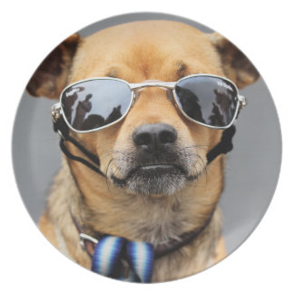 Chihuahua - Hello Ladies! Plate