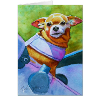 Chihuahua in a Stroller Card