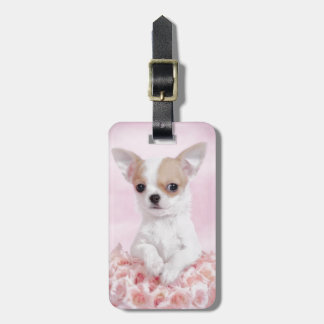 Chihuahua in pink with roses luggage tag