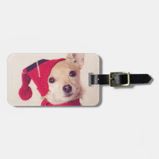 Chihuahua In Winter Cap Luggage Tag
