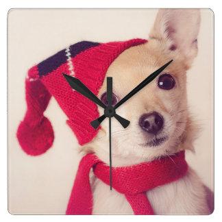 Chihuahua In Winter Cap Square Wall Clock