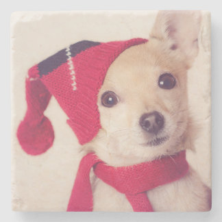 Chihuahua In Winter Cap Stone Beverage Coaster