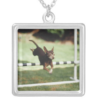 Chihuahua Jumping Hurdle Silver Plated Necklace