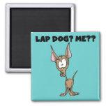 Chihuahua Lap Dog Tshirts and Gifts