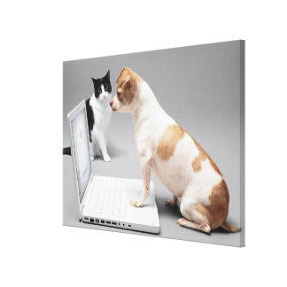 Chihuahua looking into the screen of a laptop canvas print