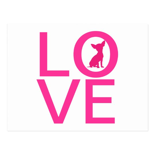 Chihuahua love pink dog cute postcard
