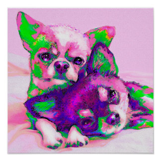 chihuahua love poster