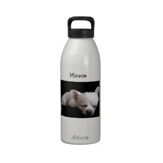Chihuahua Minnie Drinking Bottles