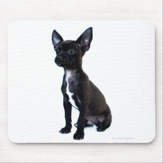 Chihuahua Mouse Pad