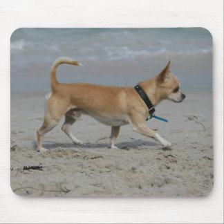 Chihuahua on Beach Mouse Pad