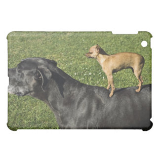 Chihuahua on Great Dane's back 2 Case For The iPad Mini