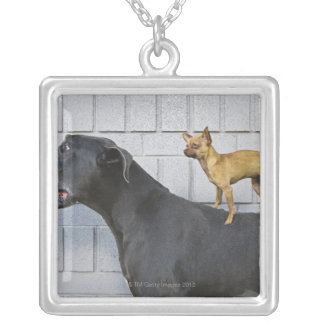 Chihuahua on Great Dane's back Silver Plated Necklace