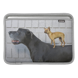 Chihuahua on Great Dane's back Sleeve For MacBook Air