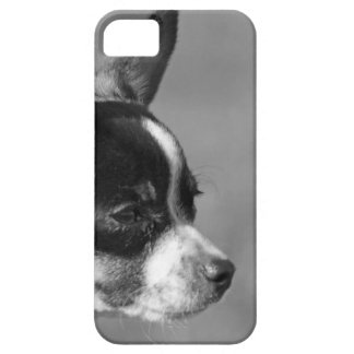 chihuahua phone case iPhone 5 cover
