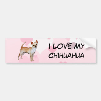 Chihuahua Pink & White Hearts Bumper Sticker
