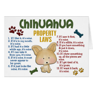 Chihuahua Property Laws 4 Card