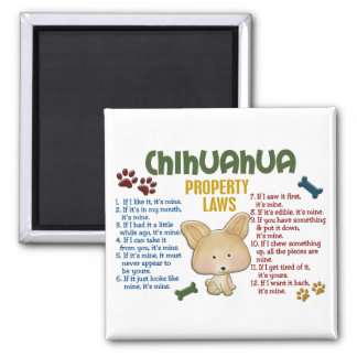 Chihuahua Property Laws 4 Square Magnet