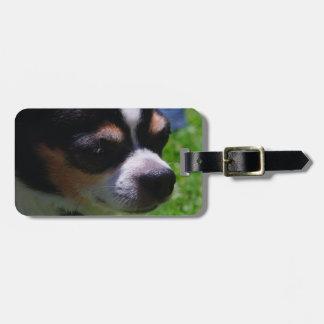 Chihuahua Pup Luggage Tag