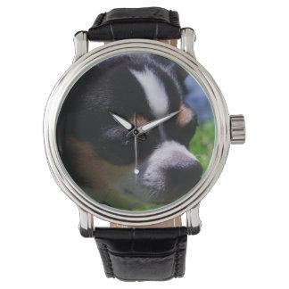 Chihuahua Pup Wrist Watches