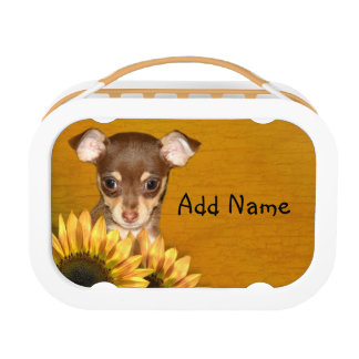 Chihuahua puppy and sunflowers lunch box