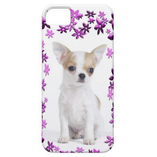 Chihuahua puppy iPhone 5 cover