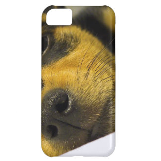 Chihuahua Puppy iPhone 5C Covers