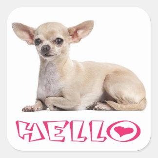 Chihuahua Puppy Dog Fuchsia Pink Hello Square Sticker