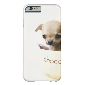 Chihuahua puppy in bowl (cropped) barely there iPhone 6 case