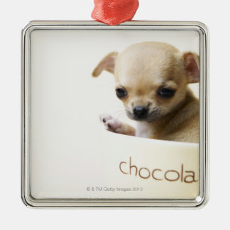 Chihuahua puppy in bowl (cropped) christmas ornament