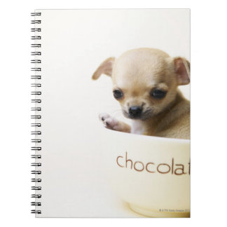 Chihuahua puppy in bowl (cropped) spiral notebook
