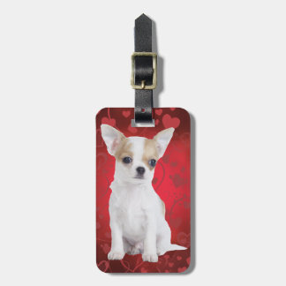 Chihuahua puppy in red luggage tag
