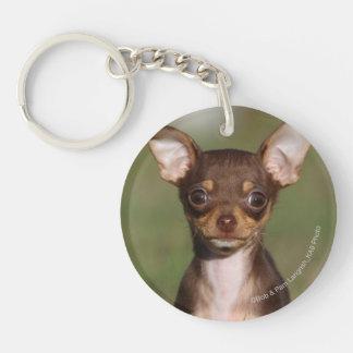 Chihuahua Puppy Looking at Camera Key Ring