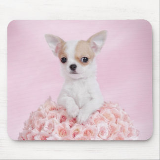 Chihuahua puppy mouse mat