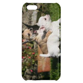 Chihuahua Puppy Playing iPhone 5C Cover
