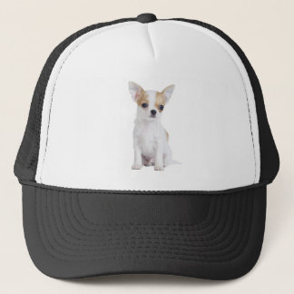 Chihuahua puppy trucker hat