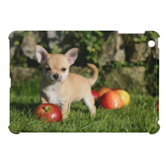 Chihuahua Puppy with Apples iPad Mini Covers