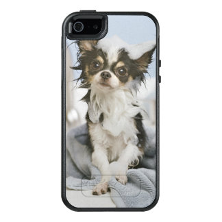 Chihuahua Puppy Wrapped In A Towel OtterBox iPhone 5/5s/SE Case