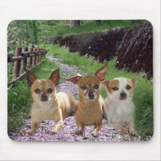 Chihuahua Purple Flowers Mousepad