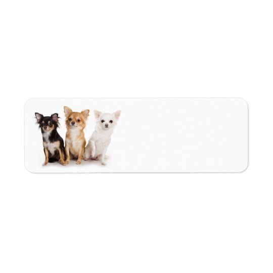 Chihuahua Return Address Label