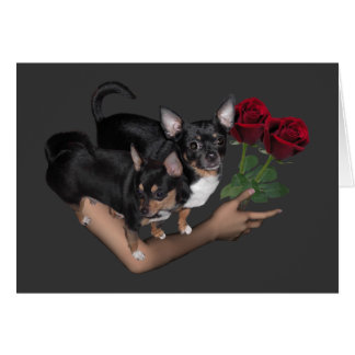 Chihuahua Roses Love Card Note Card