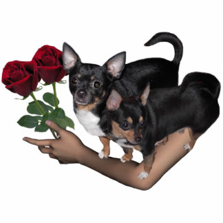 Chihuahua Roses Photo Sculpture Standing Photo Sculpture