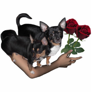Chihuahua Roses Photo Sculpture
