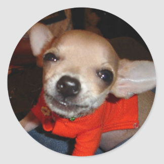 CHIHUAHUA SAY CHEESE! ROUND STICKER