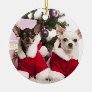 Chihuahua Sitting And Wearing A Christmas Suit Christmas Ornament