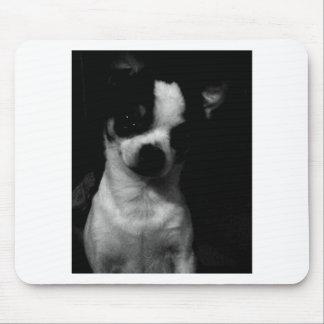 Chihuahua Small Dog Mousepads