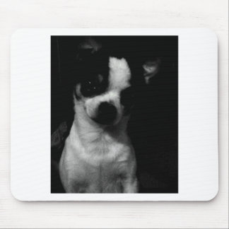 Chihuahua Small Dog Mouse Pad