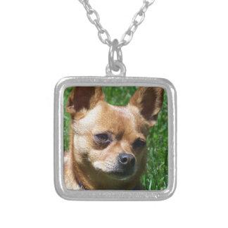 Chihuahua Square Pendant Necklace