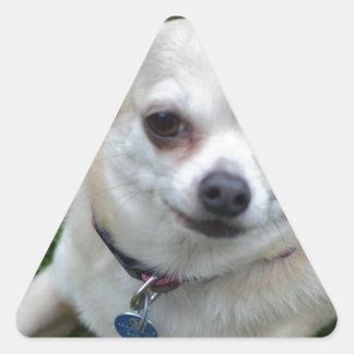 Chihuahua Triangle Sticker